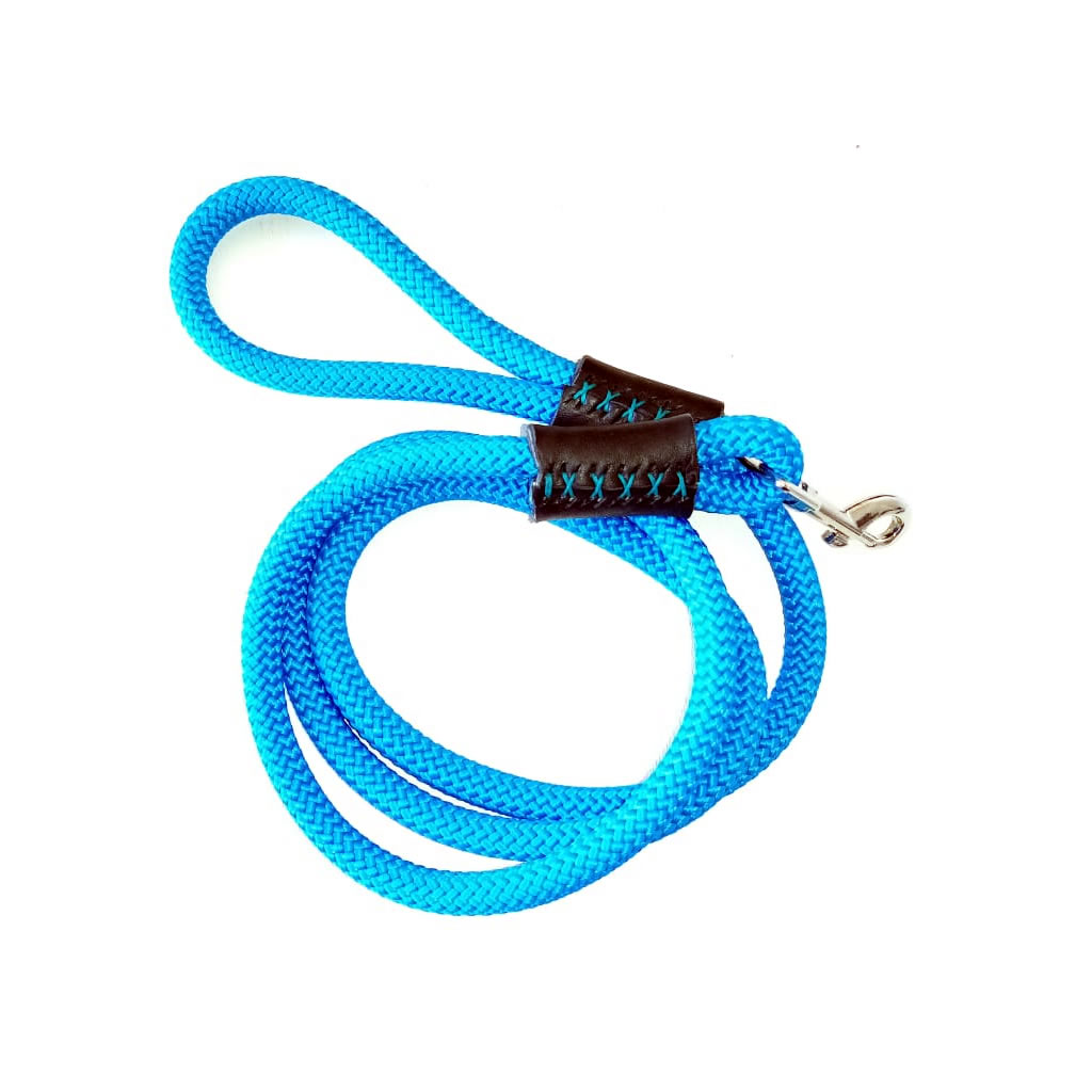 Dog Leash - Turquoise Blue