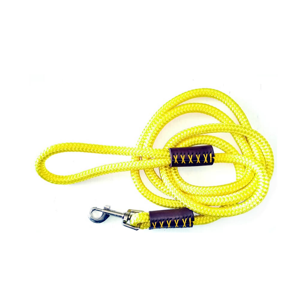 Dog Leash - Yellow Rope