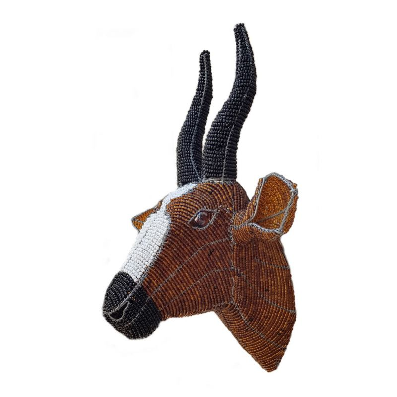 Bontebok - Trophy Head - Small