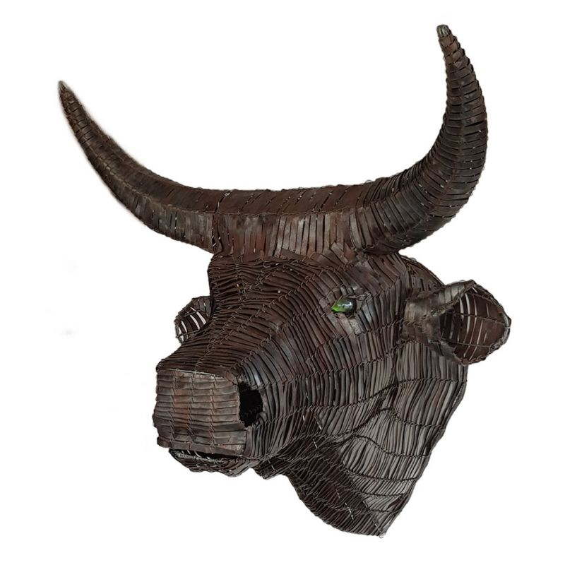Cow Nguni - Trophy Head - Large