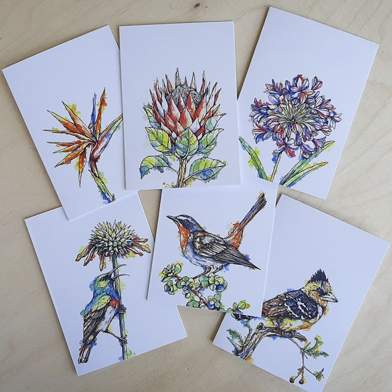 South African Birds & Flowers - Greeting Cards - A6 set of 6