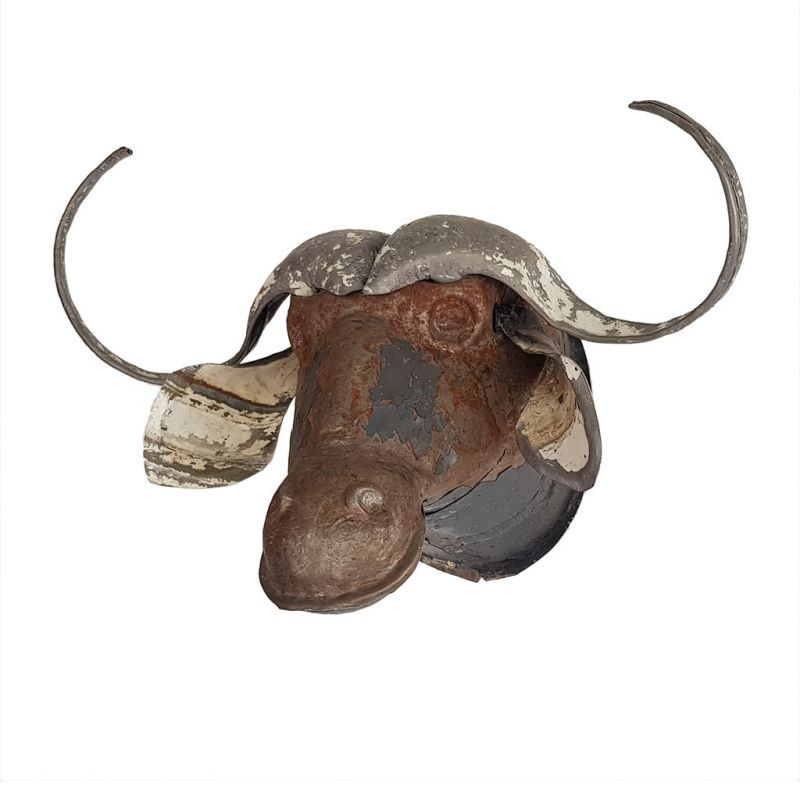 Water Buffalo - Trophy Head