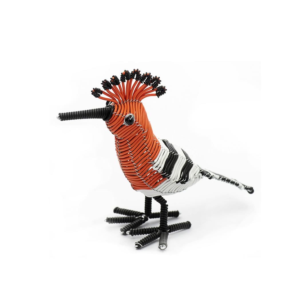 Bird - Hoopoe - Telephone Wire - Standing